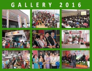 gallery 2016